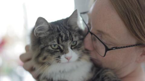 Betald ledighet för anställda som skaffar valp eller kattunge – Arken Zoo inför Tasstid permanent