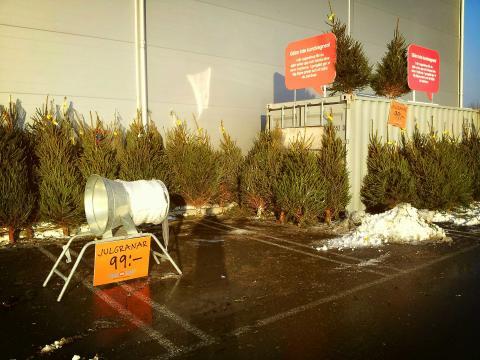 NetOnNet säljer julgranar på nätet, fraktfritt med hemleverans!