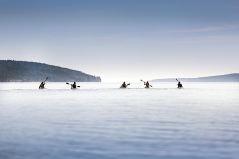 Kajakpaddling under Höga Kusten Hike