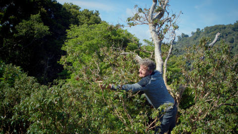 Gordon Ramsay på klatretur i New Zealand