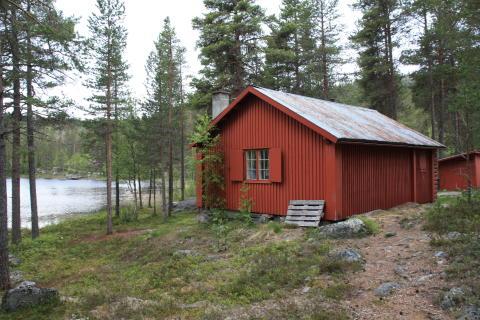 Hytte i Dalføret - Drivarstua - skogseiendom til salg i Buskerud