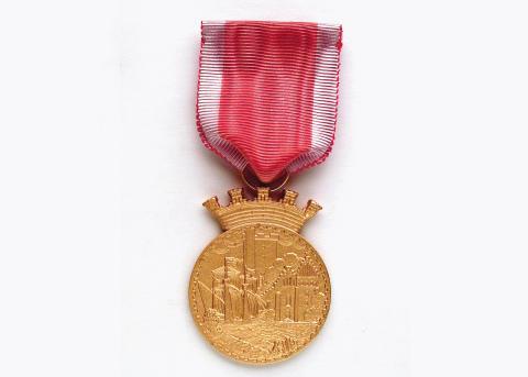 Vem ska belönas med Helsingborgsmedaljen?