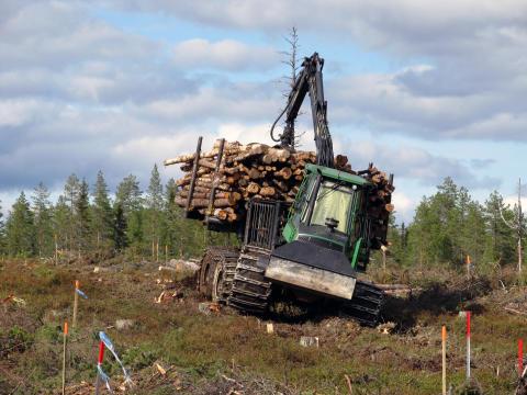 Terrängtransport med virke kan leda till markpackning också på steniga marker