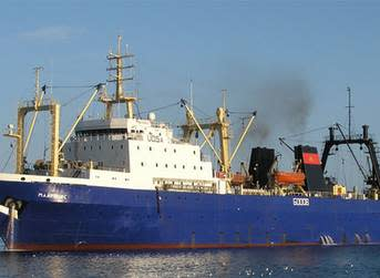 WWF withdraws objection to MSC certification of Russian pollock fishery