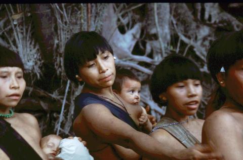 Guldgravere graver sig ind på Yanomami stammen i Amazonas