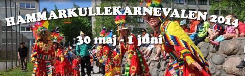 Träffa Vägvalet på Hammarkullekarnevalen