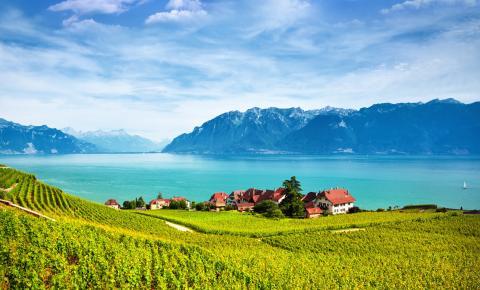 Genfersee mit den Weinterrassen von Lavaux