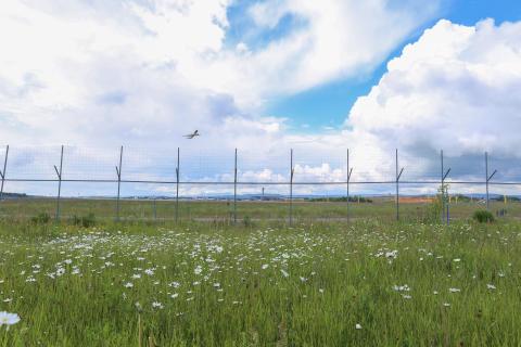 Oslo Lufthavn åpnet renseanlegg for PFOS