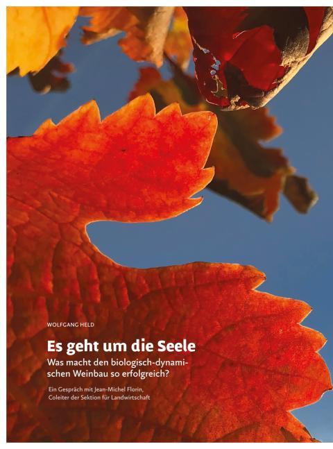 Interview mit Jean-Michel Forin, Herausgeber des Buches ‹Biologisch-dynamischer Weinbau› (‹Das Goetheanum› Nr. 43/2017)