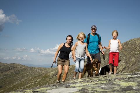 Stor ökning av gästnätter i Åre hittills i sommar