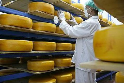 Arab Dairy yellow cheese