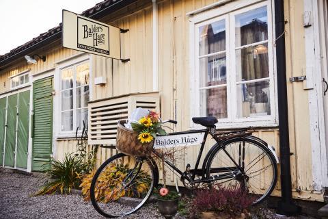 Balders Hage i Alingsås