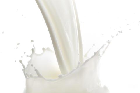 Milchmarkt 2016: Molkereien und Erzeuger gefordert