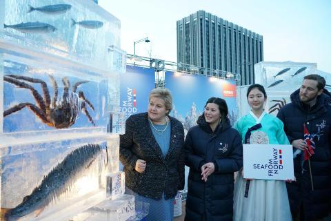 Statsminister Erna Solberg kastet glans over den norske kongekrabben under OL Seoul