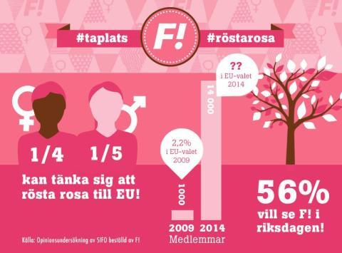 SIFO: Var fjärde kvinna kan tänka sig att rösta på Feministiskt initiativ