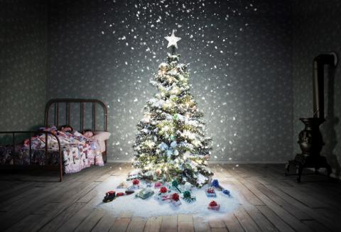 Bild: Kampanjbild Ensam julgran