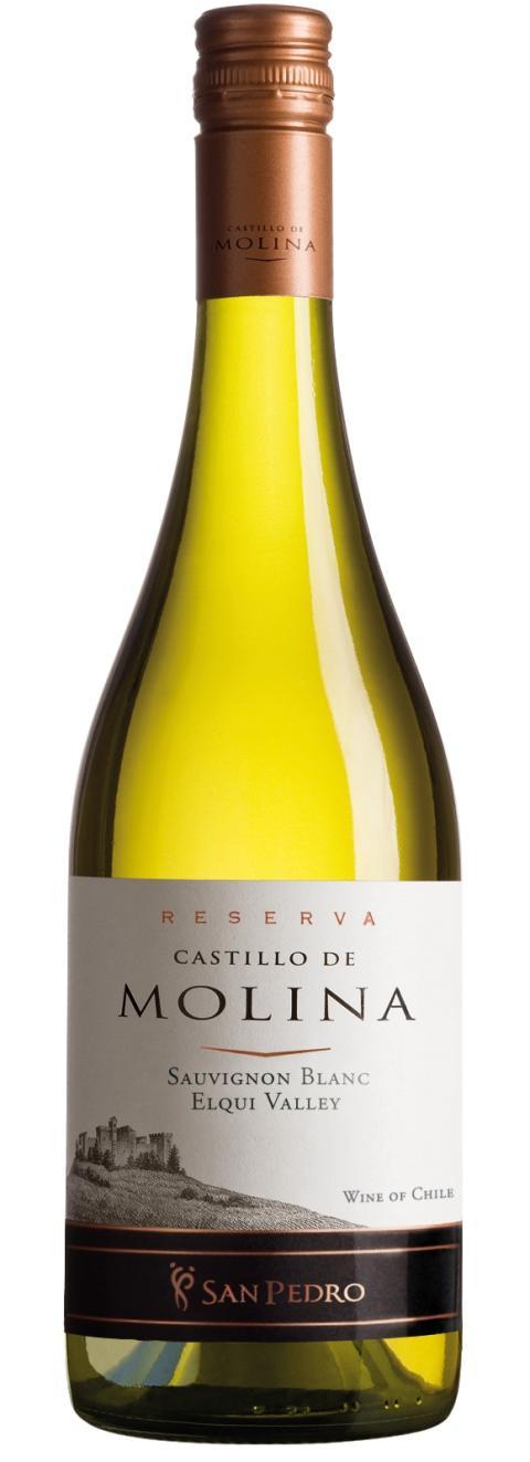 NYHET 1 oktober Castillo de Molina Reserva Sauvignon Blanc