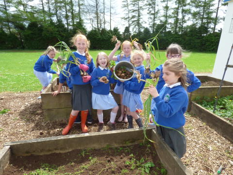School growing Club Programme