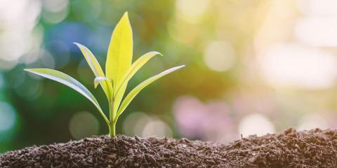 Evidensia inleder arbetet med att bli klimatpositiva