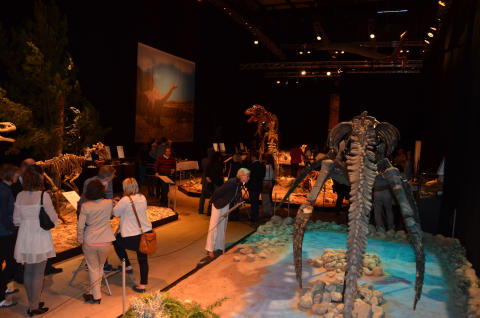 Dinosaurium i Halmstad – en av världens största vandringsutställningar
