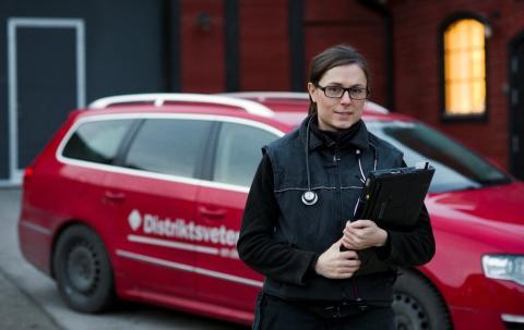 Mottagningarna i Hedemora och Borlänge flyttar ihop och blir Södra Dalarna