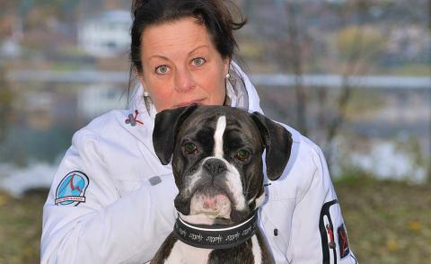 Ollie är Årets bragdhund 2016