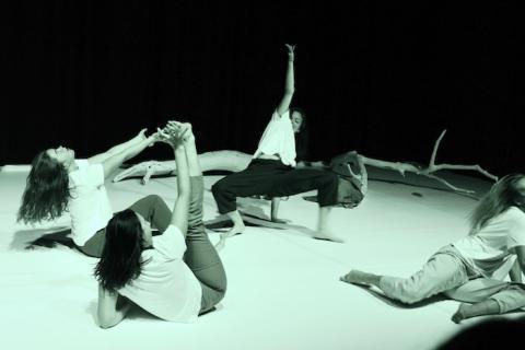 Sanningar om ilska i dans- och performance-föreställning