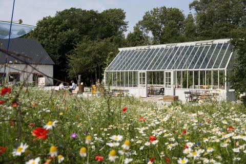 Växthus på Leva