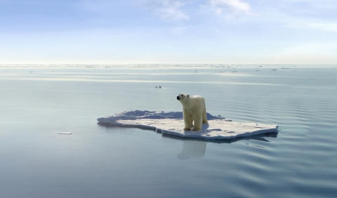 MÄNNISKA OCH  NATUR: Klimatförändringarnas historia