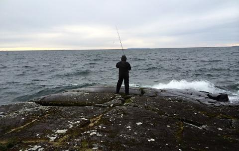 Viktiga satsningar på svenskt fritidsfiske och fisketurism redovisas i årsrapport