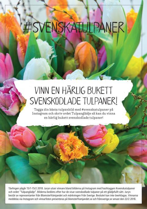 Instagramtävlingen #svenskatulpaner, information