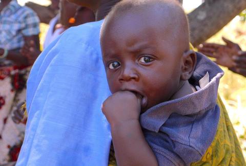 Akutinsatser i torkans Malawi