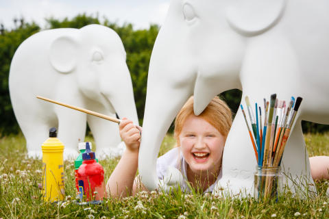 A Whitley Bay youngster has won a place in the nationwide Elephant Parade art exposition.
