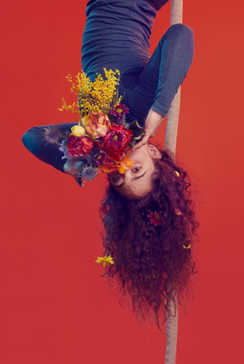 Bloom. Foto Klara G