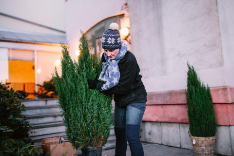 Julepynting på Teisen