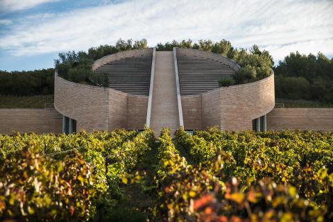 Petra Wines, Italien