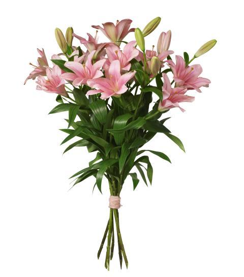 Bukett Rosa liljor