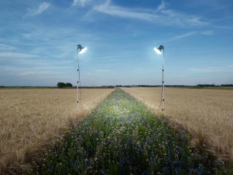 © eddo hartmann, Netherlands, Shortlist, Professional competition, Environment , 2020 Sony World Photography Awards