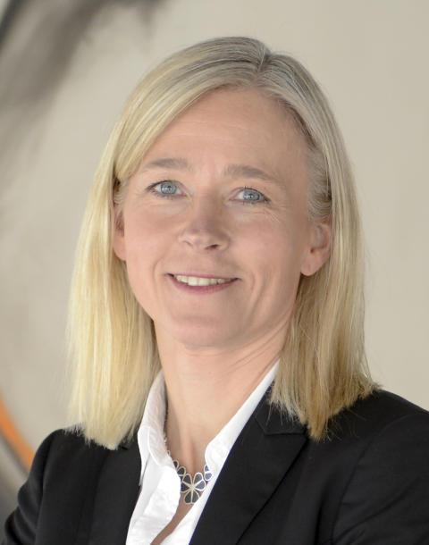 Anna Hadenius, stadsdirektör
