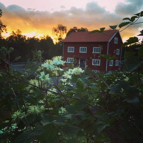 Länets och hela Sveriges mathantverkare i din hand