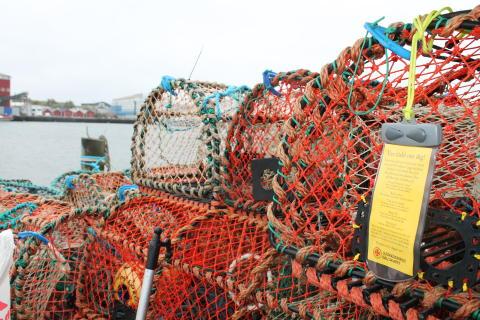 Sjöräddningssällskapet delar ut mobilfodral inför hummerpremiären