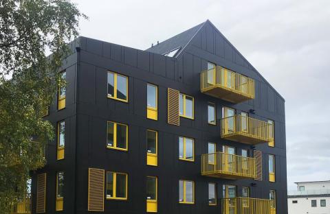 Getinghusen i stadsdelen Lilla Träslöv som husen kallas i folkmun har ritats av Arkitema Architects.