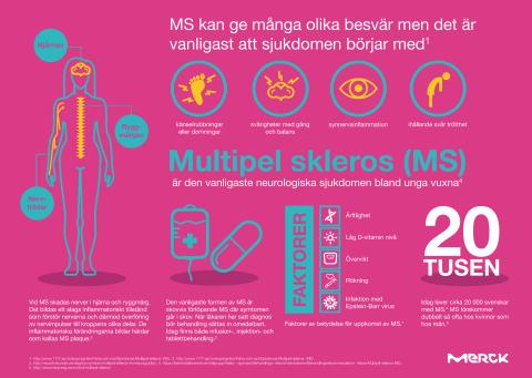Infografik MS