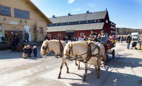 Häst och vagn runt godset