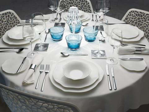 Nouvelle vaisselle dans la collection haut de gamme for Vaisselle restaurant gastronomique