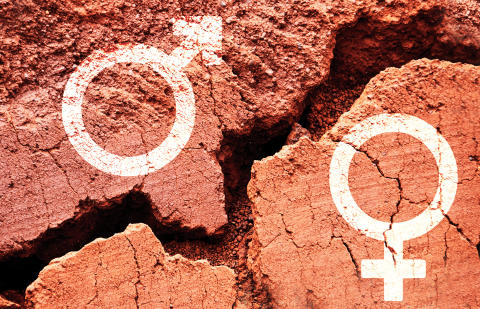 Tackling Gender Based Violence in Universities