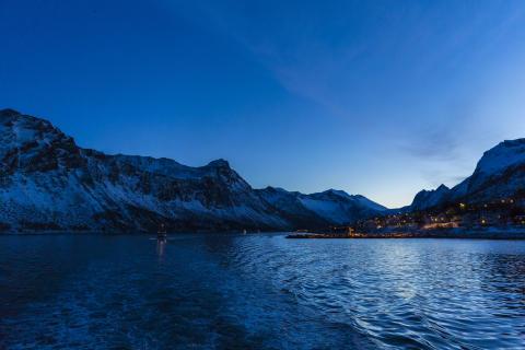 Leaving Gryllefjord skreifishing