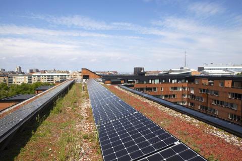 Mitt i Malmö producerar MKB Fastighets AB solel som det surrar om