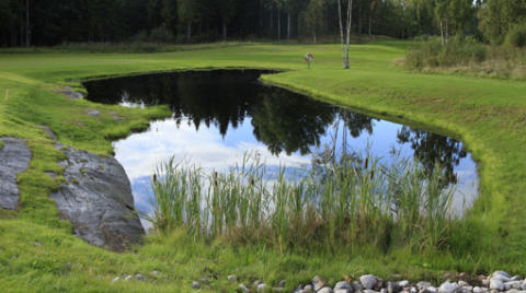 "Karpsläpp med ""After Work Golf"" på Nyköpings Golfklubb den 27 april"