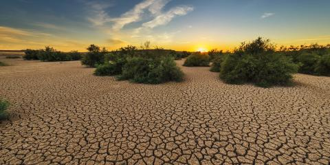 Climate Change and Land – about the new IPCC special report